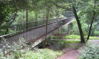 Brücke Stadtwald